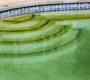 zanieczyszczona woda w basenie