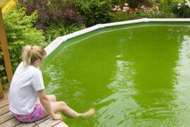kobieta basen z zielona woda 270x180 - basen z zieloną wodą